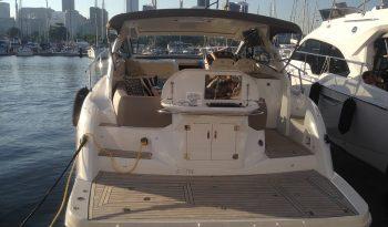 Sessa Marine C40 full
