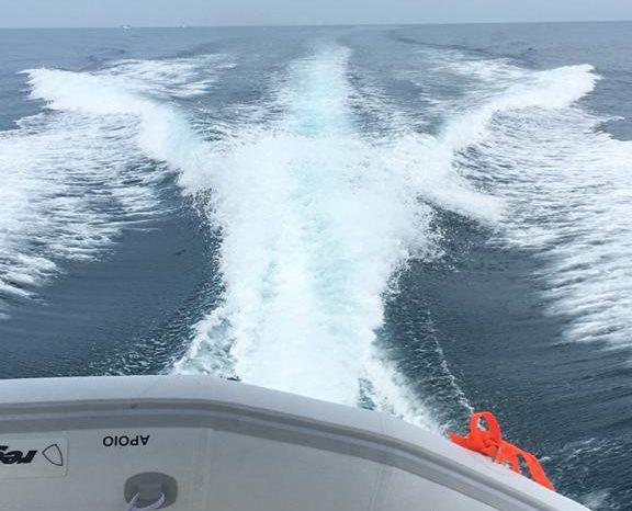 Searay 335 full